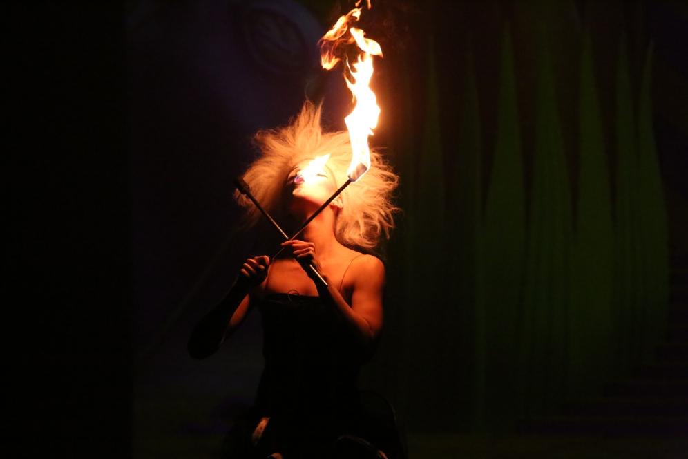 the-carnival-a-circus-opera-_-95