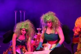 the-carnival-a-circus-opera-_64