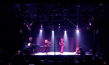 'The Pheonix' (song) | Hamburg 2013 (13)