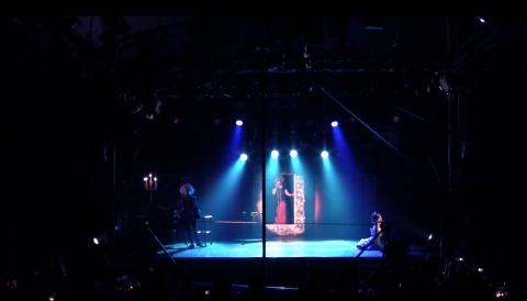 'The Pheonix' (song) | Hamburg 2013 (8)